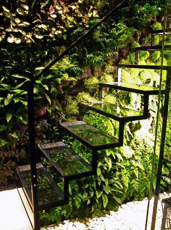 Trap met planten