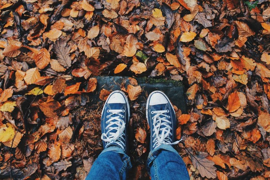 Optimaal genieten van je tuin in de herfst!