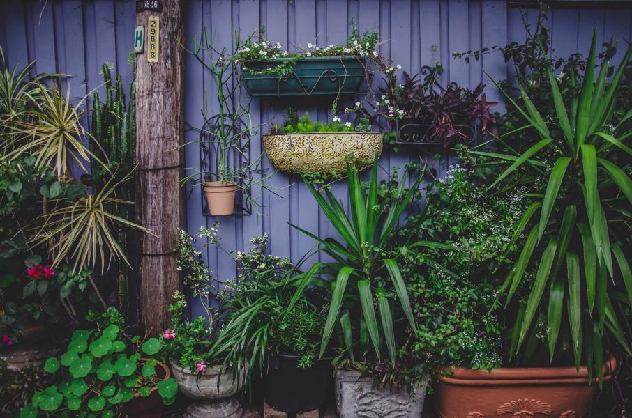 Een kleine tuin inrichten, zo pak je dit aan