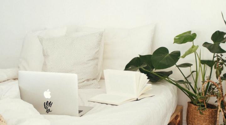 Zuurstofplanten in de slaapkamer: de 10 beste luchtzuiverende planten op een rij