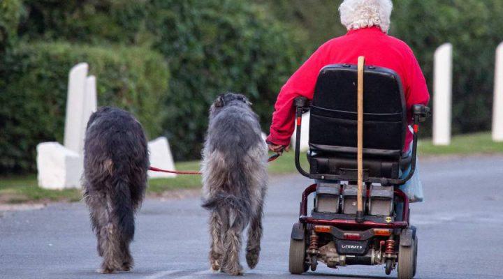 Dé woontrends van ouderen 2019