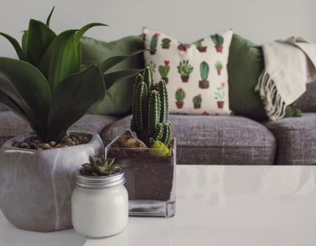 Is online meubels kopen de toekomst?