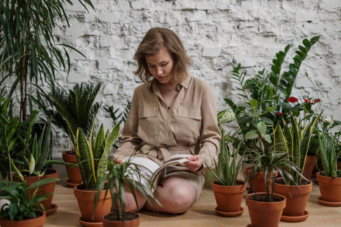 Je woonkamer opfleuren? Bekijk de kamerplanten trends van 2021